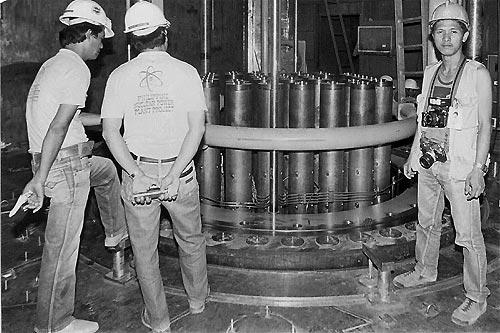Nuclear power plant essay