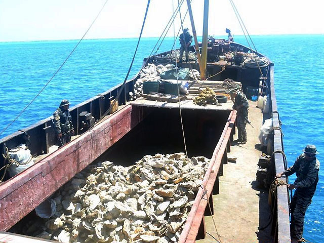Image result for chinese fishing west philippine sea