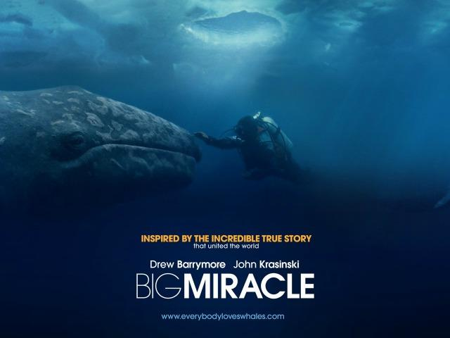 Movie Review Small Wonders In Big Miracle