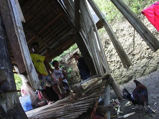 Cebu landslide kills 2 