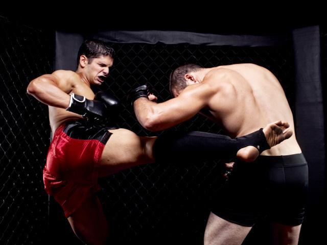 anderson silva kickboxer