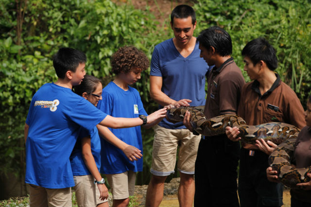 What survival skills can kids learn from animals? | Lifestyle ...